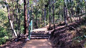 Mt Coot-tha Summit Track