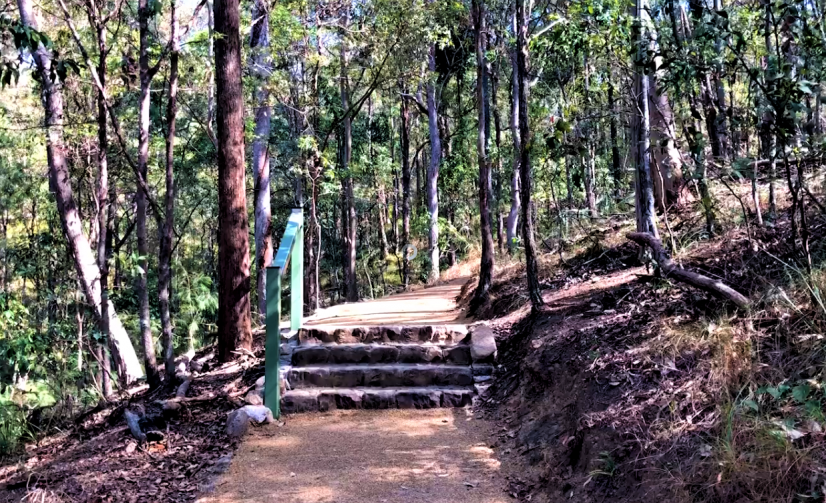 Mt Coot-tha Summit Track Reopens After Makeover